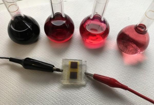 Celle fotovoltaiche scarti uva