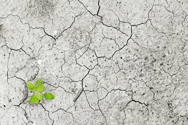 Fondo Globale per il Clima