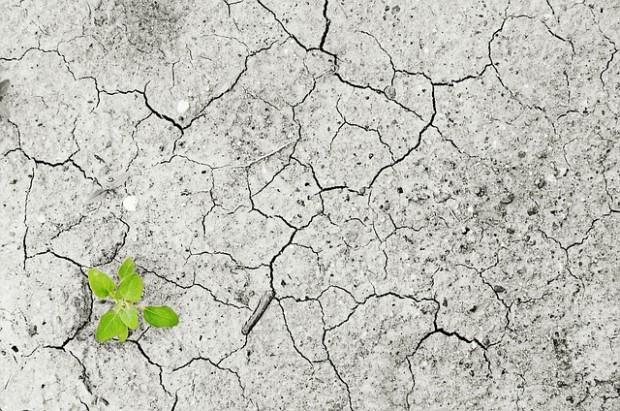 Fondo Mondiale per il Clima