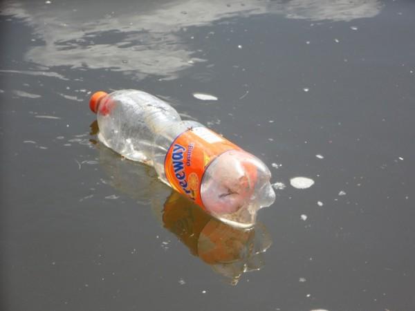 Plastica monouso