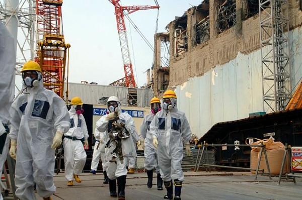 rinascita di fukushima
