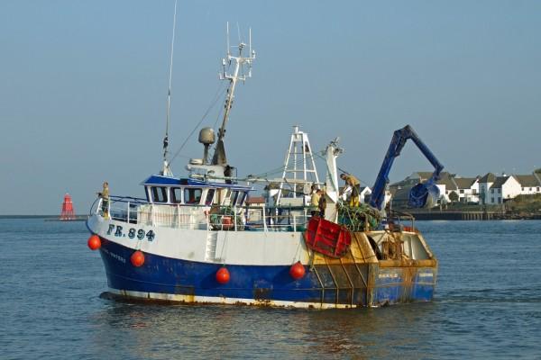 Pesca sostenibili