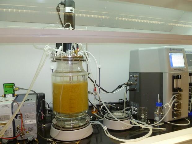 produrre idrogeno dai rifiuti
