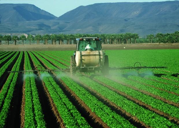 pesticidi altamente pericolosi