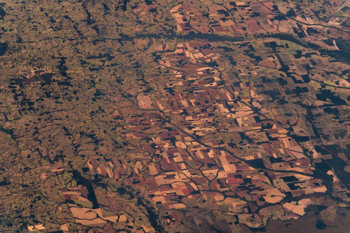 deforestazione amazzonica