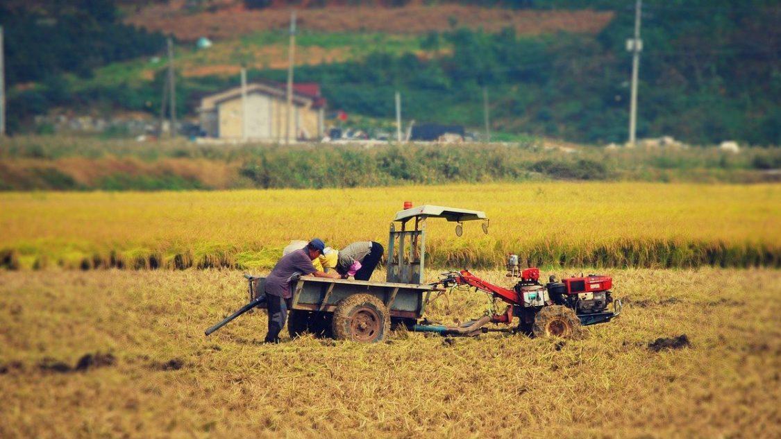 Lavoratori agricoli