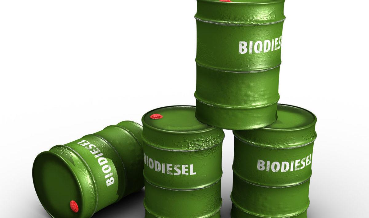 biodiesel argentino
