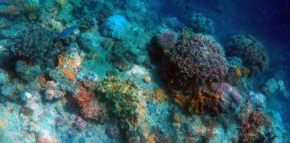 Estrazione mineraria nei fondali marini