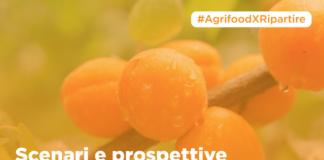 scenari e prospettive delle imprese agroalimentari