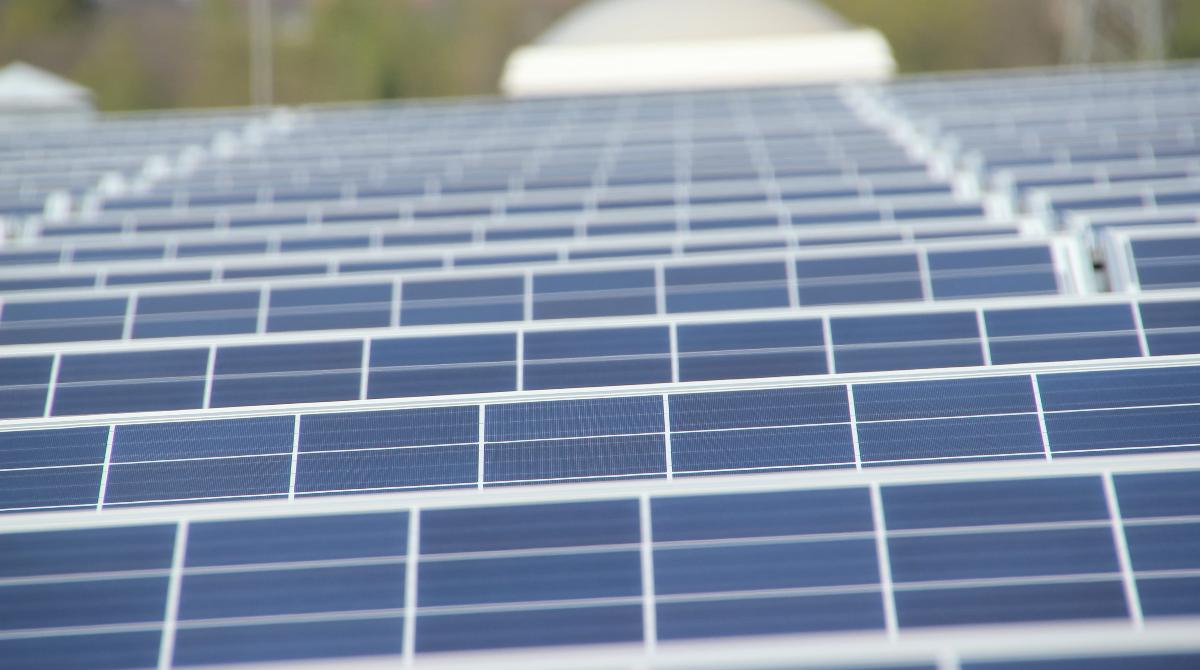 domanda elettrica rinnovabili