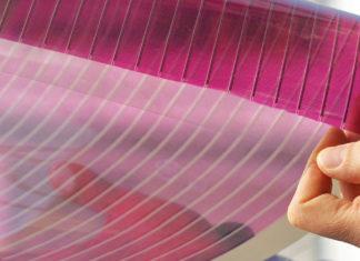 celle solari organiche trasparenti