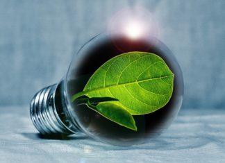 Bando Green Deal