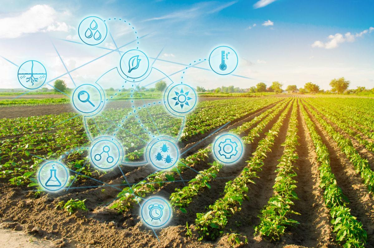 La tecnologia nell'agricoltura di domani, arriva Agridigit