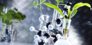 Strategia nazionale sull'idrogeno