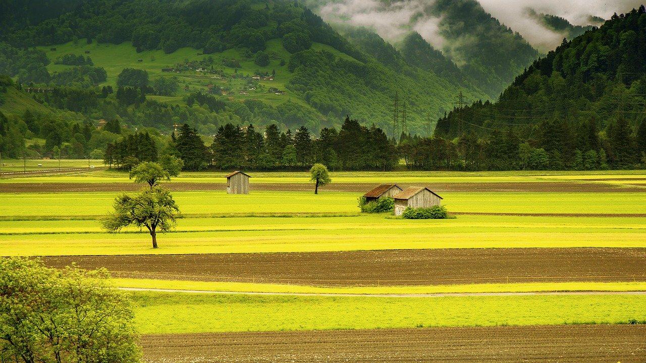 Ruralità ed imprenditorialità
