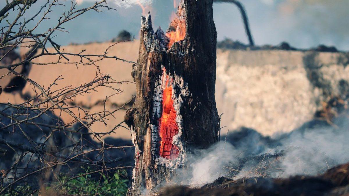 incendi boschivi in Europa