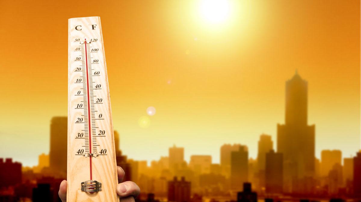 Riscaldamento globale: il 2020 è l'anno più caldo della storia