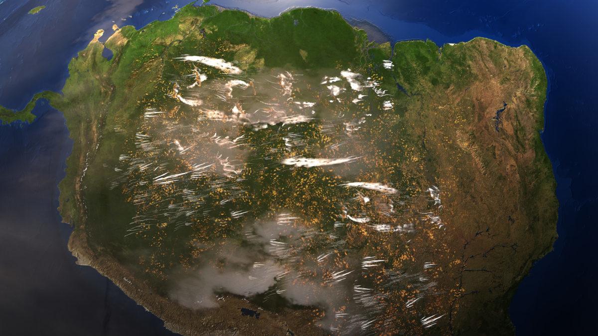 Deforestazione in Amazzonia: tra 5 anni il punto di non ritorno