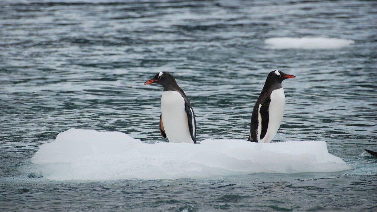 Neutralità climatica: ecco perché bisogna fare in fretta