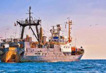 Pesca sostenibile: le grane di Bruxelles con il tonno dell'oceano Indiano