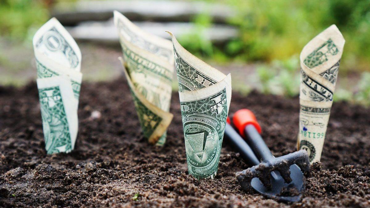 Rischi climatici: le banche centrali provano a diventare più verdi