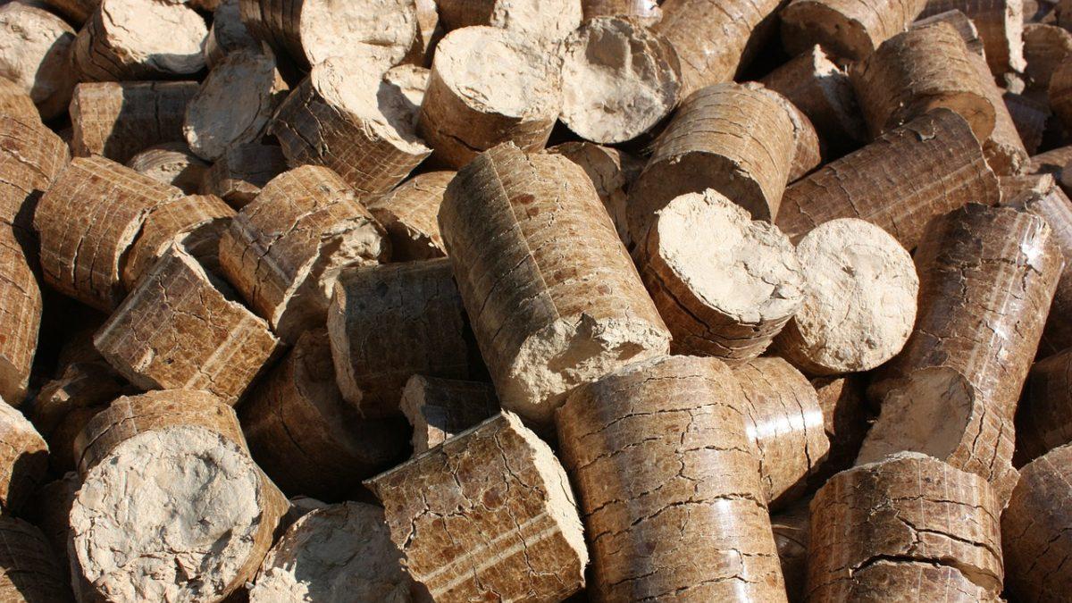 Biomasse, il boom può raddoppiare lo stress idrico globale