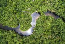 Deforestazione: Bolsonaro chiede 1 mld di dollari per non distruggerla