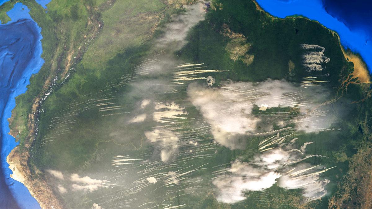 Incendi in Amazzonia: si prepara una stagione da record in Brasile