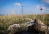 energie rinnovabili biodiversità