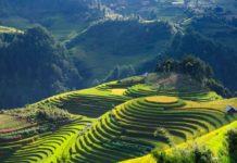 Uso del suolo: l'uomo ha modificato il 32% della superficie terrestre dal 1960