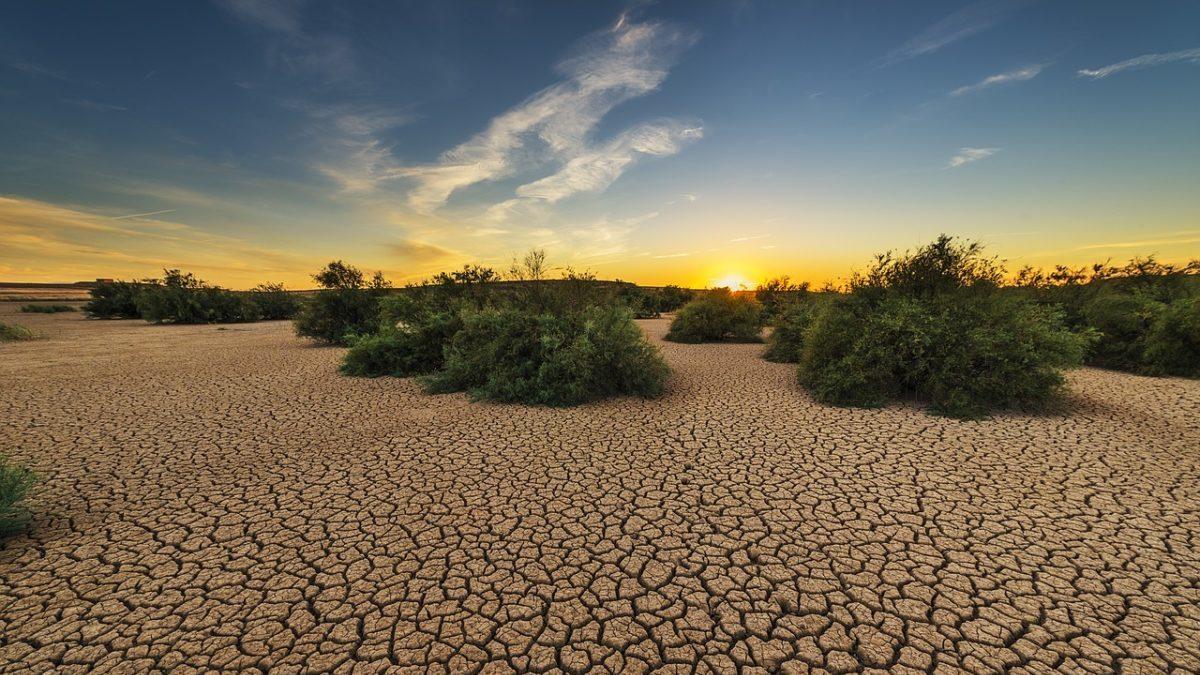 Crisi climatica: quanto costa il business as usual da qui al 2050