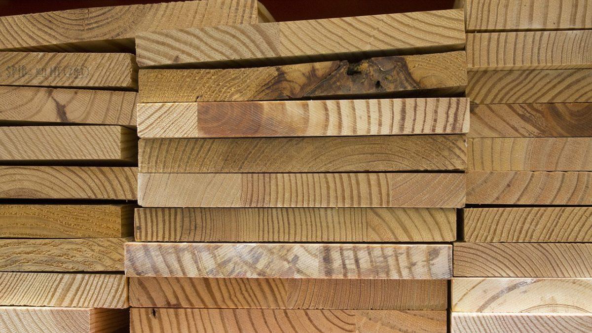 Traffico illegale di legname: si dimette il ministro dell'Ambiente del Brasile