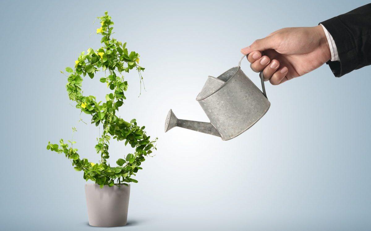 debito sostenibile