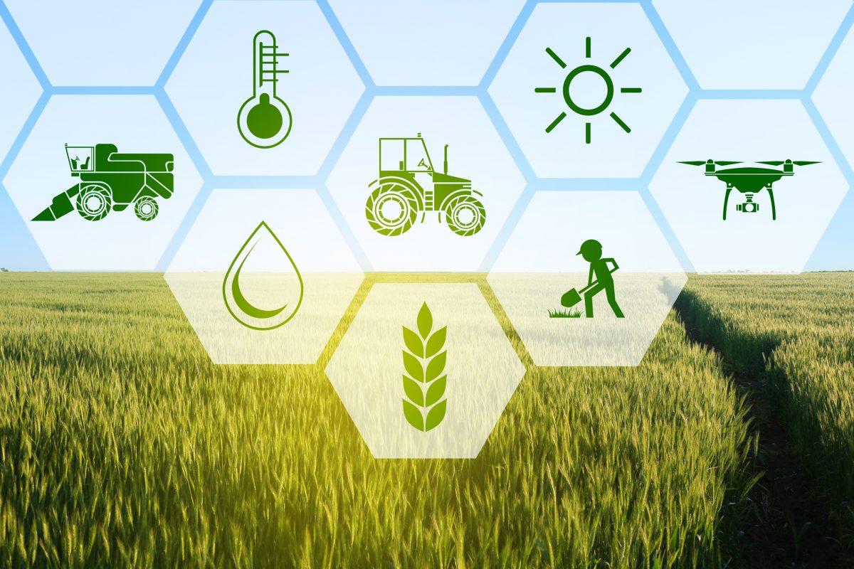 startup agroalimentari