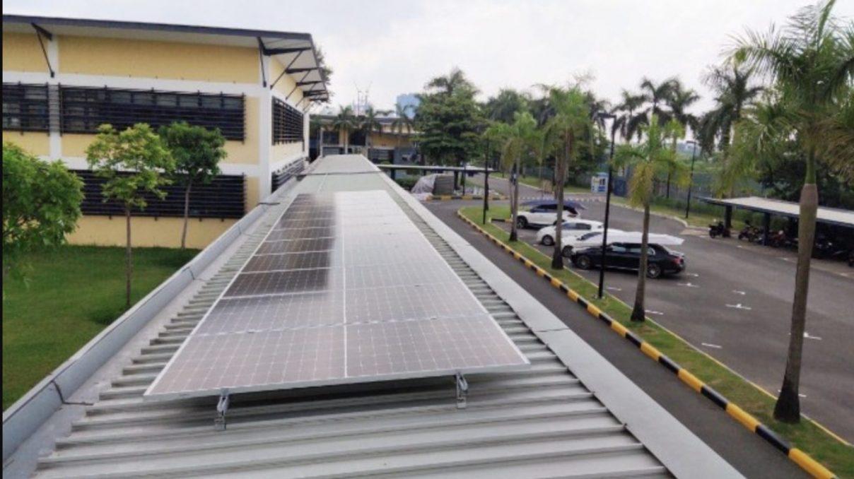 celle solari TOPCon di tipo P
