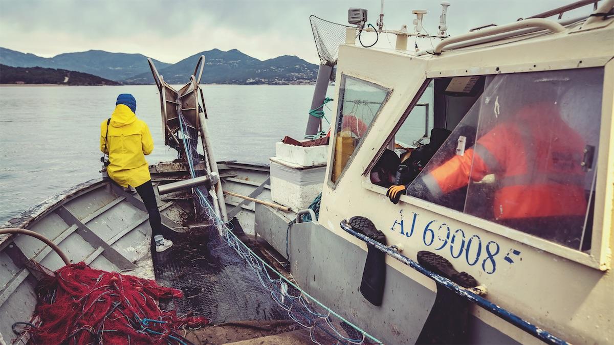 pescaturismo sostenibile