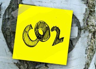 Emissioni: un nuovo indicatore misura il costo di mortalità del carbonio