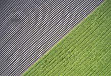 Principio 'chi inquina paga': deve coprire anche l'agricoltura UE