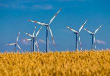Ripresa verde: allarme dell'IEA, solo il 2% della spesa è green