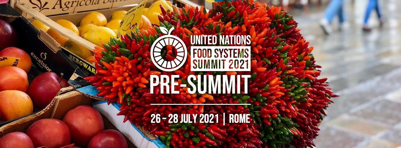 pre food system summit