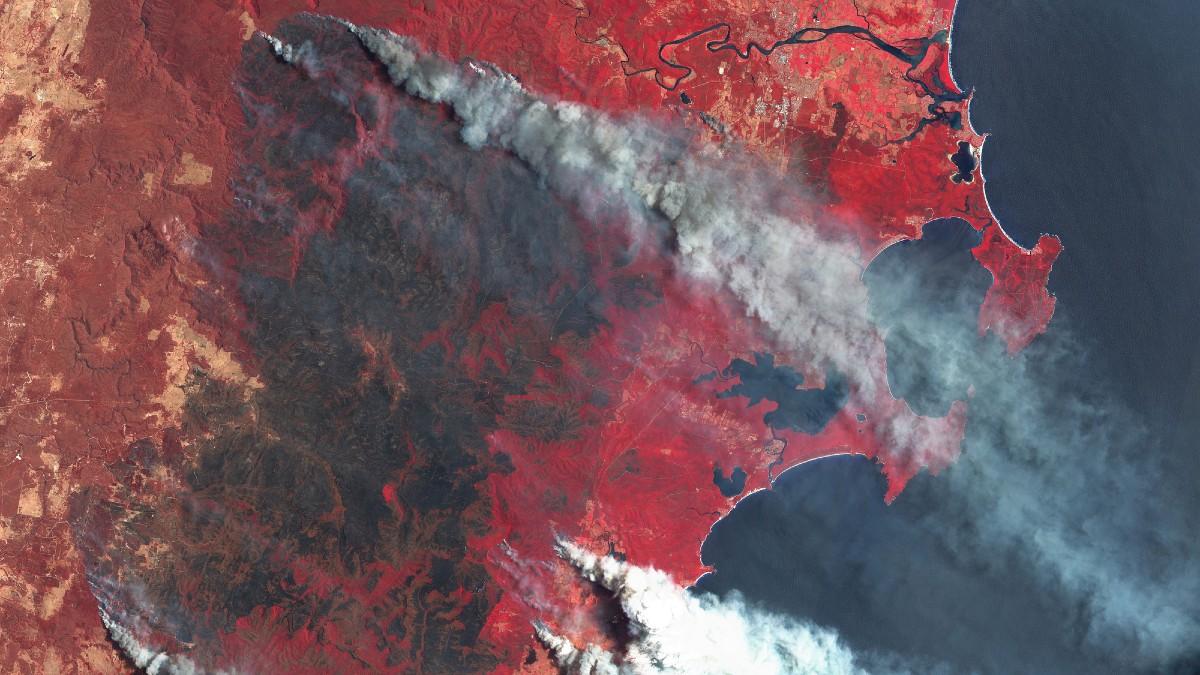 Fumo degli incendi: mortalità più alta del previsto secondo un nuovo studio