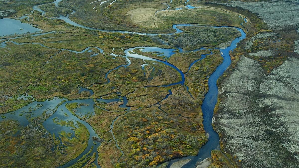 Artico: stop al progetto Pebble Mine (e alle trivelle)