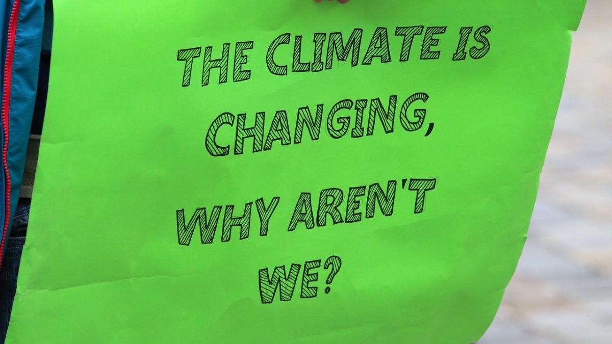 Sciopero globale per il clima: tornano in piazza i Fridays for Future