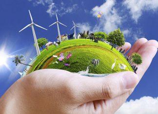 violazioni ambientali