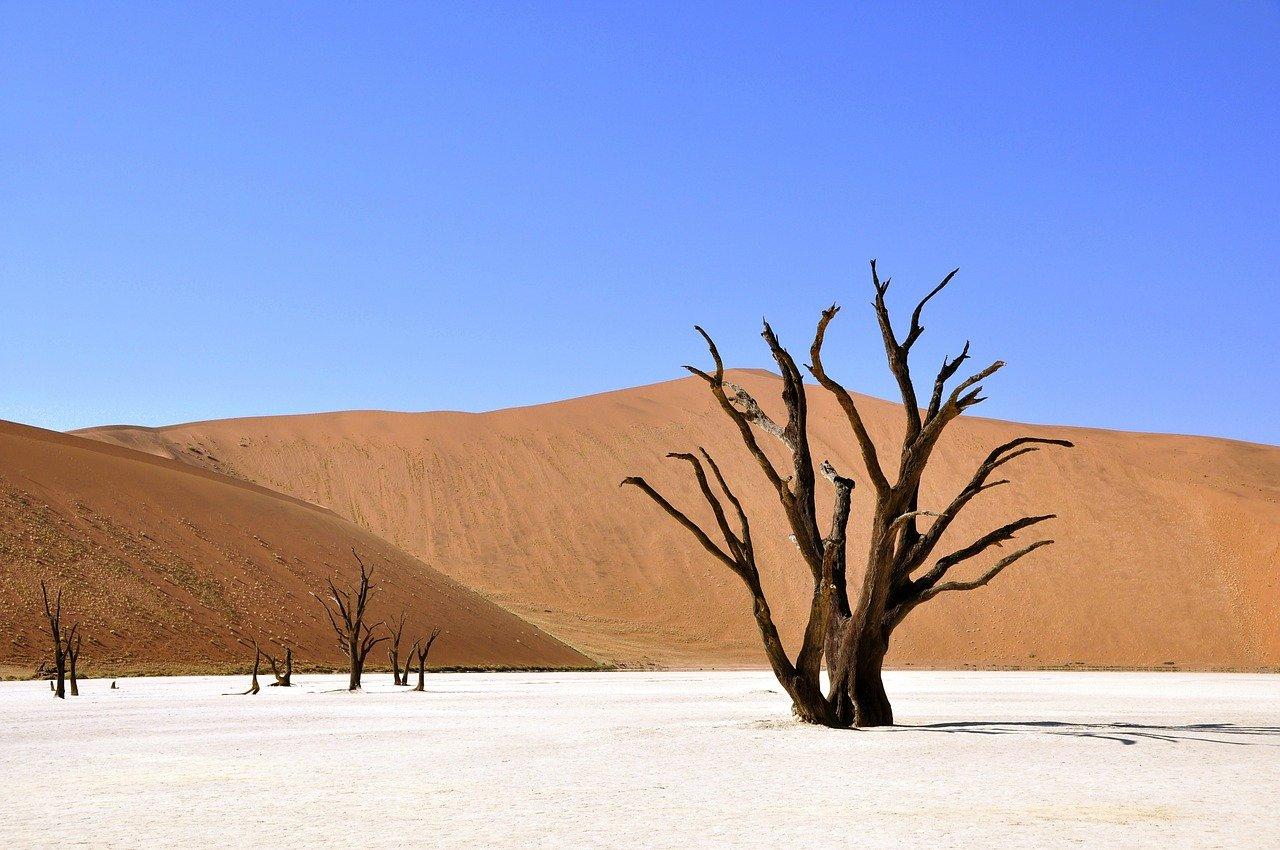 desert to power